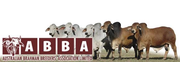 Australian Brahman Breeders' Association Limited